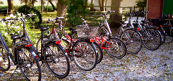 A group of bicycles